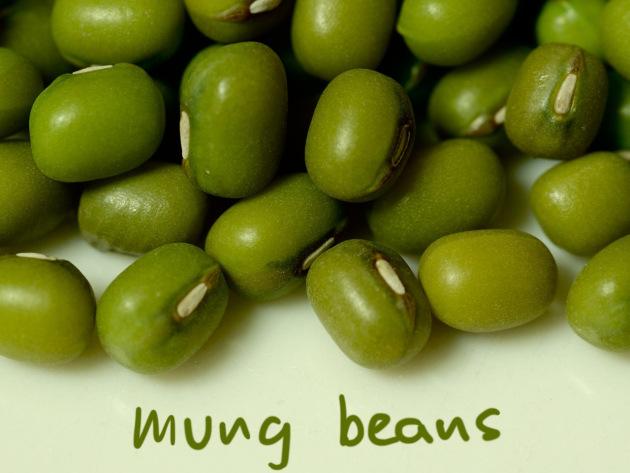 Jual Kacang Hijau Berbagai Jenis Harga Distributor Grosir Murah