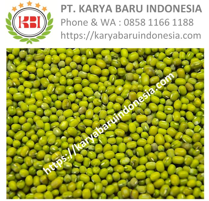Jual Kacang Hijau Harga Distributor Grosir Termurah – PT. Karya Baru Indonesia